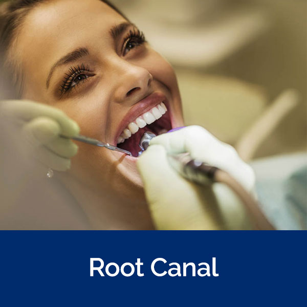 section-root-canal
