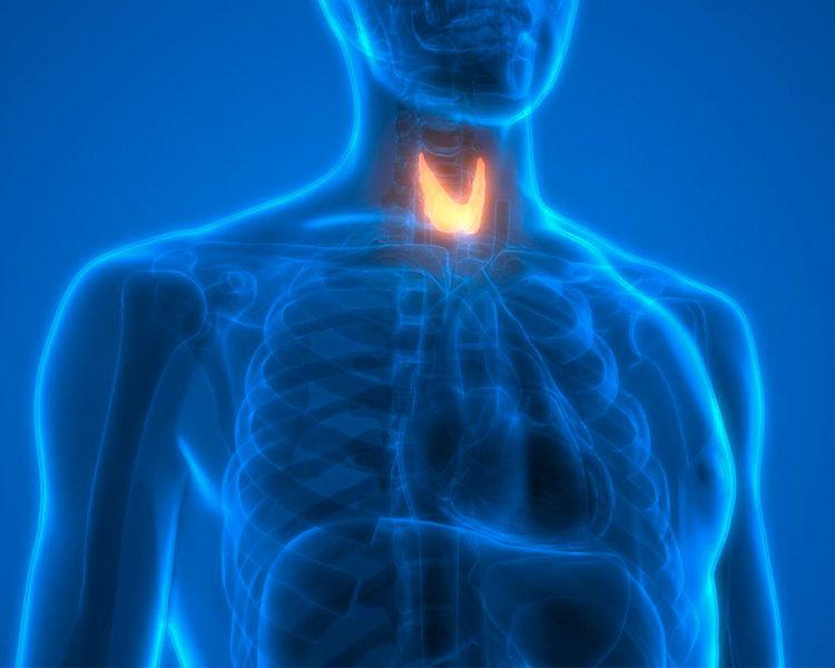 Pesticides, Hypothyroidism, and Oral Health