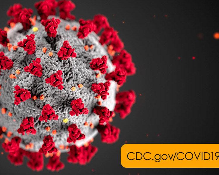 COVID-19: The Coronavirus Disease
